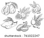 sketches of fruits for... | Shutterstock .eps vector #761022247