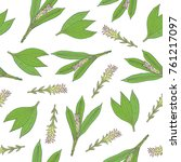 botanical seamless pattern with ... | Shutterstock .eps vector #761217097