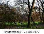 autumn trees in park | Shutterstock . vector #761313577