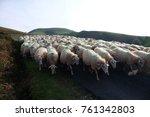 picturesque landscape  ... | Shutterstock . vector #761342803