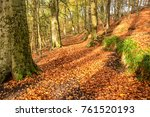 background picture of autumn... | Shutterstock . vector #761520193