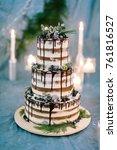 cooking  sweetness  wedding... | Shutterstock . vector #761816527