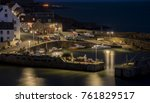 a close view of the crail... | Shutterstock . vector #761829517