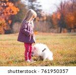 beautiful little blonde hair... | Shutterstock . vector #761950357