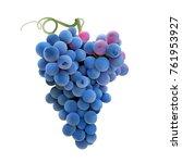 grapes. hand drawn vector... | Shutterstock .eps vector #761953927