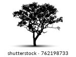 tree silhouettes on white... | Shutterstock .eps vector #762198733
