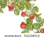 horizontal banners with ripe... | Shutterstock . vector #762238513