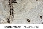 Small photo of annual ring of old wood texture and background.