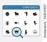 set of 12 editable zoology...   Shutterstock .eps vector #763019557
