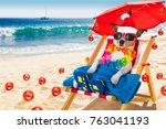 jack russell dog   in  hammock... | Shutterstock . vector #763041193