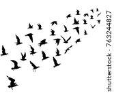 silhouettes of flying birds | Shutterstock .eps vector #763244827