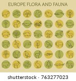 flat european flora and fauna ... | Shutterstock .eps vector #763277023