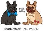 dog illustration on a white... | Shutterstock .eps vector #763493047
