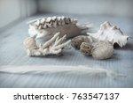 Vintage  White Coral  Hive ...