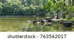 stone in park pond | Shutterstock . vector #763562017