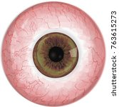 realistic human eye with light...   Shutterstock .eps vector #763615273