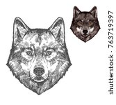 wolf wild animal sketch vector