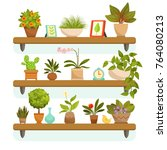 home plants and decorative... | Shutterstock .eps vector #764080213