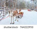 reindeer with sledge in winter... | Shutterstock . vector #764222953