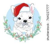 portrait of cute french bulldog ... | Shutterstock .eps vector #764227777