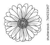 a hand drawn chamomile gerbera... | Shutterstock .eps vector #764231347
