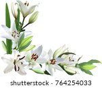 illustration with light lily... | Shutterstock .eps vector #764254033