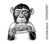monkey wearing a t shirt eating ... | Shutterstock .eps vector #764563987