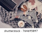 woman in cozy home clothes... | Shutterstock . vector #764695897