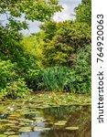"Small photo of View of the idyllic pond with some water liky ""Nymphaea alba"" in the park ""Suedpark"" of Dusseldorf in Germany"