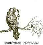 detailed hand drawn raven bird... | Shutterstock .eps vector #764947957