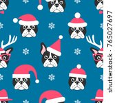 seamless pattern with french... | Shutterstock . vector #765027697