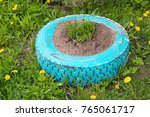 homemade flowerbed from a tire | Shutterstock . vector #765061717