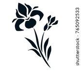 flat ornamental vector iris...   Shutterstock .eps vector #765092533