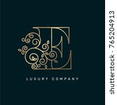 vector graphic elegant logotype ... | Shutterstock .eps vector #765204913