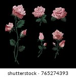 pink roses embroidery patch ... | Shutterstock .eps vector #765274393