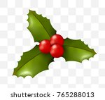 christmas time  holly on... | Shutterstock .eps vector #765288013