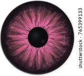 pink eye iris   Shutterstock .eps vector #765399133