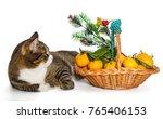 gray cat christmas basket of... | Shutterstock . vector #765406153