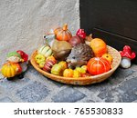 fruits vegetable fox and... | Shutterstock . vector #765530833