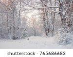 frosty landscape in snowy... | Shutterstock . vector #765686683