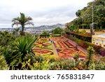 beautiful garden in funchal ... | Shutterstock . vector #765831847