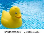 Yellow Squeak Duck In A Pool...