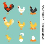 a colorful farm birds... | Shutterstock . vector #765883927