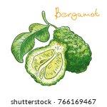 bergamot fruit on a white... | Shutterstock .eps vector #766169467