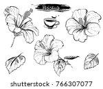 hand drawn illustration set of... | Shutterstock .eps vector #766307077