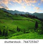 colorful summer sunrise... | Shutterstock . vector #766725367
