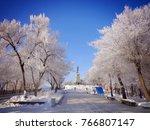 frosty winter day in khabarovsk....   Shutterstock . vector #766807147