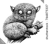 black and white engrave... | Shutterstock .eps vector #766875337
