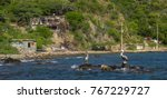 pelicans sitting on a rock near ... | Shutterstock . vector #767229727