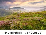 grassy hills with field of... | Shutterstock . vector #767618533